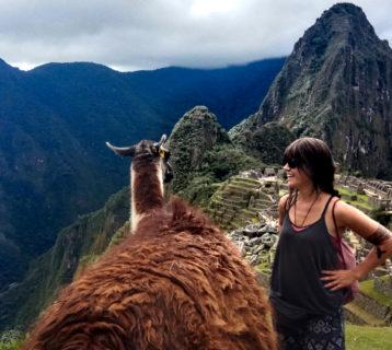 Lama i widok na Macu Picchu