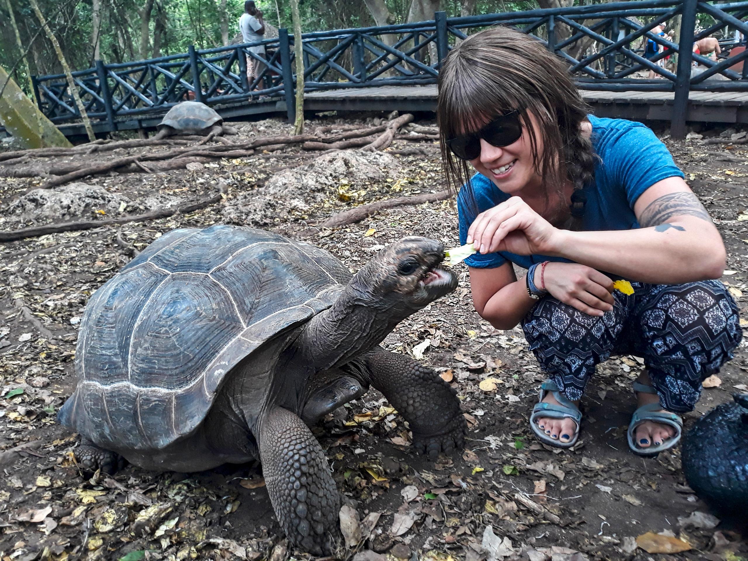 zanzibar-żółw-wyspa-więzienna