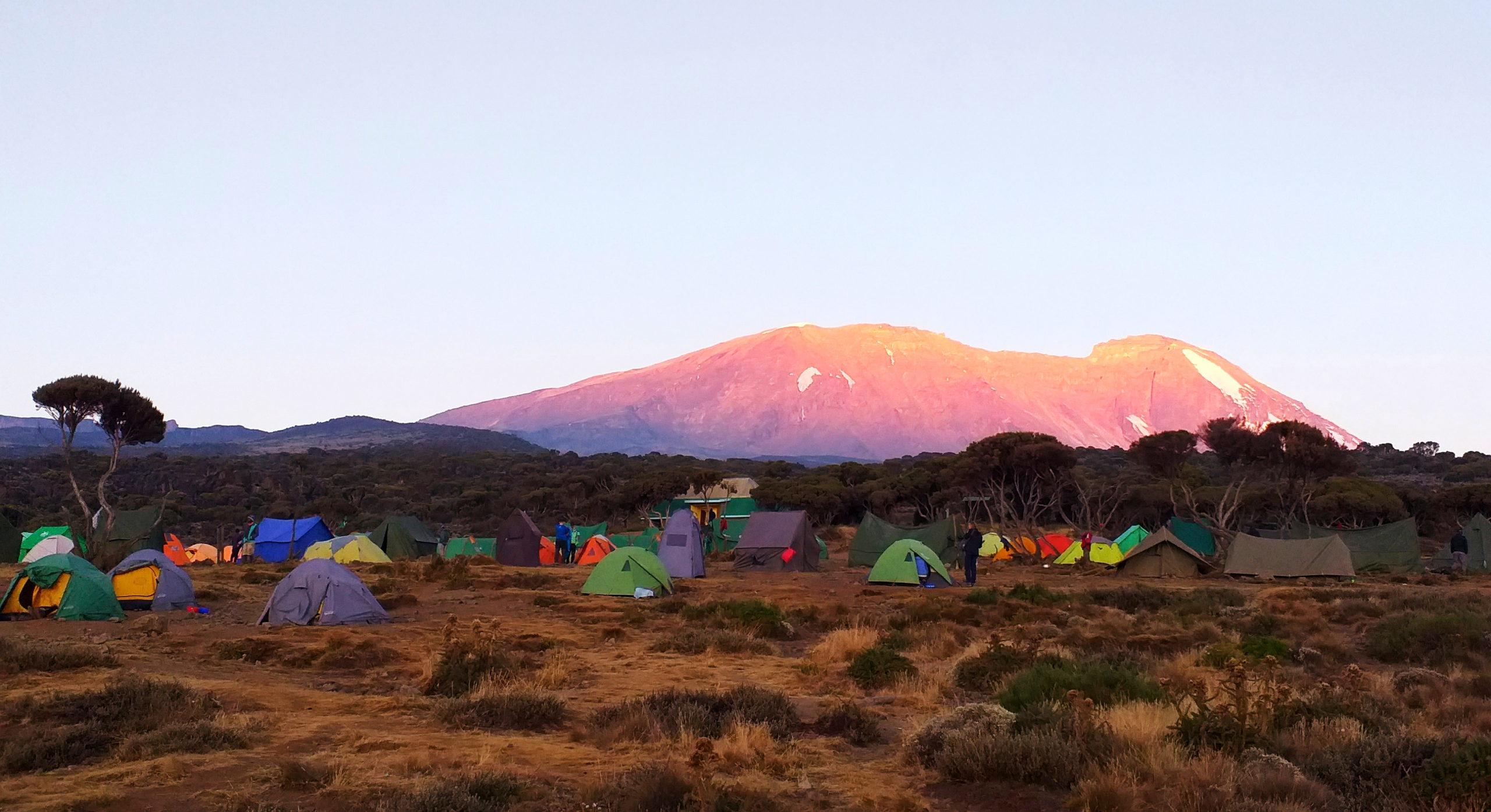 kilimandżaro-obóz-shira